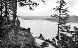 """On the Malahat Drive, Victoria, BC."""