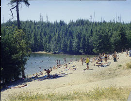 Beach On Campbell Lake
