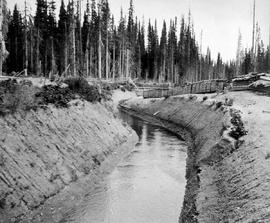 Ditch used to supply water for the Cariboo Hydraulic Co.'s mining operation.