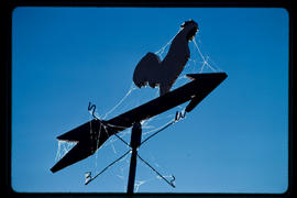 Weathervane Near Slocan