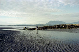Clam Digger At Fort Defiance, Clayoquot