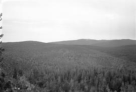 Porter Hill survey photograph