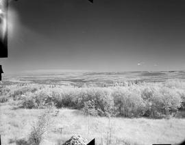 View from Prophet (Grassy Mountain) forest lookout, NE shot 2