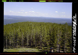 Forest Service; Bull lookout.