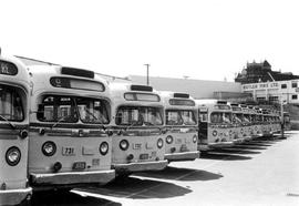 BC Hydro buses at Garbally Road, Victoria.