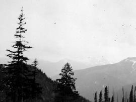 View of the Selkirk Mountains, Trout Lake Mining District.