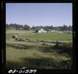 Farm View In Saanich
