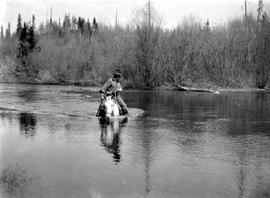 Survey team member fording the Long Lake River on the McLeod Trail.