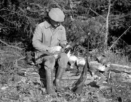 Boy sitting with ruffed grouse, mallard and pheasant shot by H.M. Laing and Ethel Laing.
