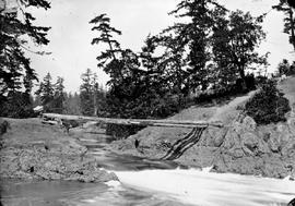 Four logs used as the first bridge over the Gorge, Victoria Arm.