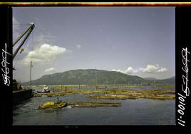 BC Forest Products Limited; booming grounds, Cowichan Bay.