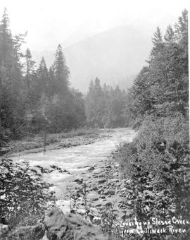 """Looking up Slesse Creek from Chilliwack River."""