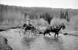 J. D. Prentice and two-horse rig, Cariboo.