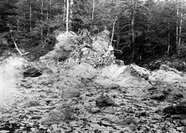 Agglomerate rock showing tar, east side of Ramsay Island.