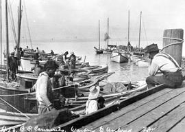 Richmond; BC Canneries; Waiting To Unload