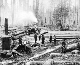 """Scene at a logging camp near Chemainus."""