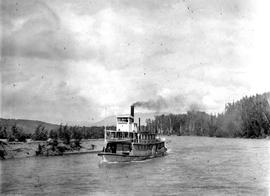 SS Pheasant On The Skeena River.