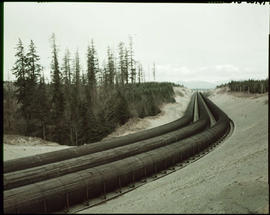 Wooden Stave Pipe For Power Plant, Campbell River