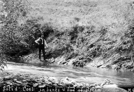 Solid coal in banks & bed of stream