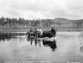 Survey party freight wagon in the shallows of a lake near 111 Mile House.