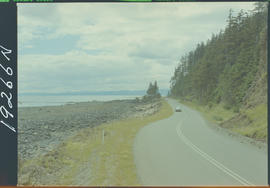 Road Near Dead Tree Point, Queen Charlotte Islands