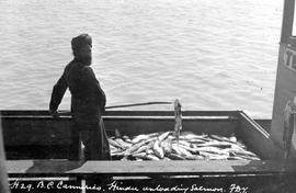 """BC canneries; Hindu unloading salmon""; Richmond"
