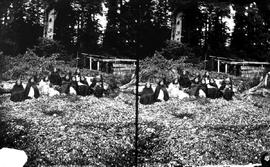 Stereoscopic photo of a group of First Nations