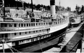 SS Adelaide in dry dock.