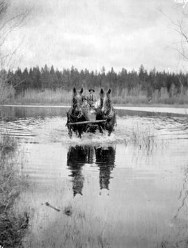 Horse-drawn wagon crossing river, McClure's survey, 111 Mile.