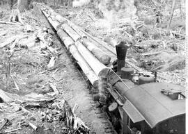 Queen Charlotte Islands Logging Operation.