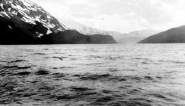 Swannell survey; mountains seen from the ocean.