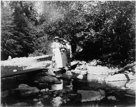 Four women standing on a plank bridge over a creek