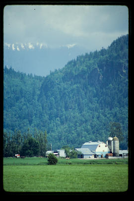 Dairy Farm Near Agassiz