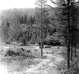 Blackwater Campsite And Bluewater Creek