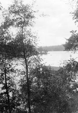 The view from Point Ellis; the boathouse visible between the trees; A.D. Crease Collection, Box 1.