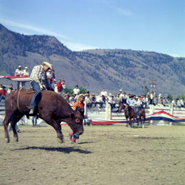 Rodeo At Indian Days Kamloops