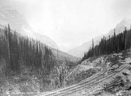 """The Big Grade, Kicking Horse Pass, Rockies."""