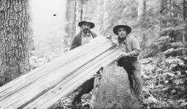 George Seel and Shorty Haven with a split cedar plank used to build a shelter.