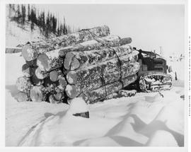 Lumberton. BC Spruce Mills Logging. Hauling Logs By Cat