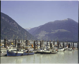 Bella Coola Fishing Fleet