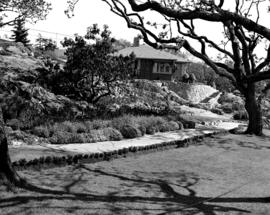 The garden at the Abkhazi residence on Fairfield Road, Victoria.
