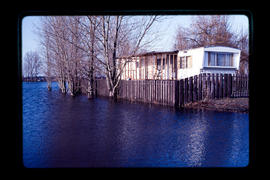 Boundary Bay Flooding