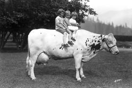 """Quality and quantity, a picture taken at Agassiz, Fraser Valley, British Columbia""; th..."
