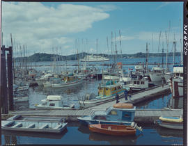 Fish Boats At Prince Rupert Wharf