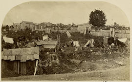 "Indian huts and shelter tents amongst the pine tree stumps of ""Stump City"" alias New Westminster, Fraser River. B. Col.  Ooolachins, or Candle Fish drying.  Indian children squatting.  Savage Indian who came out with his gun and threatened to shoot me if I did not clear out.  [In pencil]:  Indians encamped at New Westminster.  No. 51"
