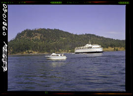 BC ferry in Active Pass.