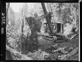 Construction Of A Logging Road. Queen Charlotte Islands