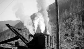 A locomotive crane with a cedar log at the Bloedel Stewart and Welsh operation at Franklin River.