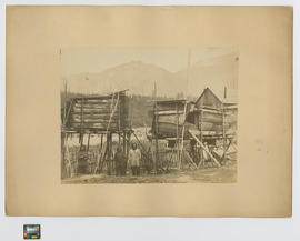 Indian Salmon Caches at Yale British Columbia shewing a double pointed spear, primitive ladder, s...
