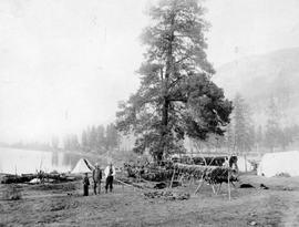 Shuswap First Nations drying salmon